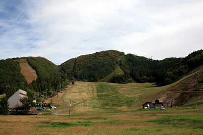 kouyo02.jpg